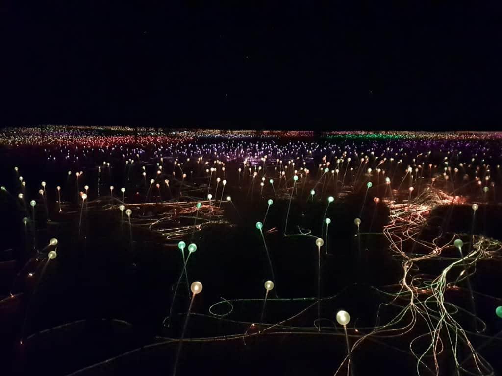Field of flower like light stems in Outback Australia