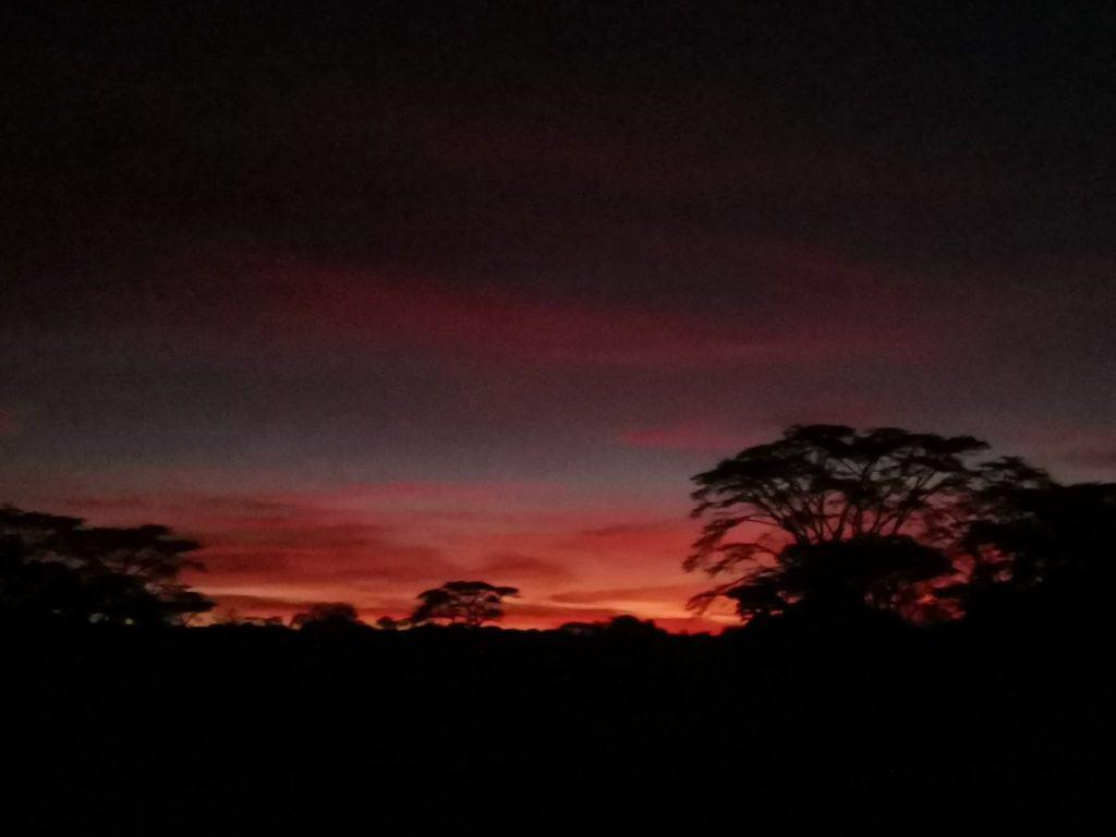 Sunrise at serengeti bush camp and safari