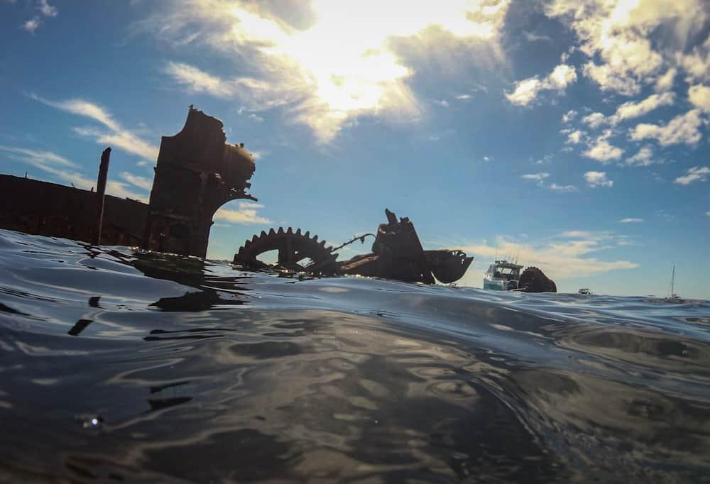 Snorkeling around Tangalooma wrecks
