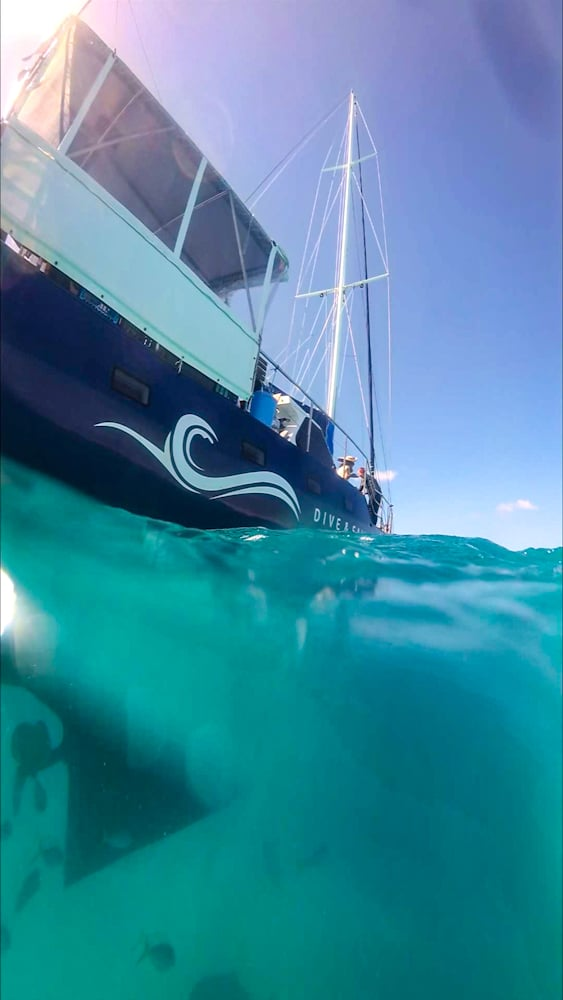 Coral sea dreaming great barrier reef liveaboard